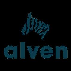 Инвестор Alven