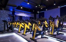 Велостримы и тренировки в Zoom: как студия сайклинга зарабатывает во время карантина