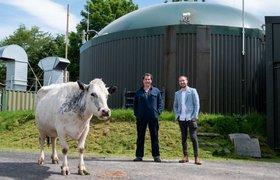 Британский фермер создал стартап по майнингу криптовалюты с помощью навоза