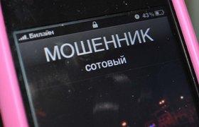 Цифры дня. РОЦИТ заблокирует мошеннические интернет-магазины