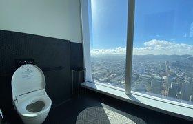 Умные туалеты собирают данные о здоровье, которые недоступны фитнес-трекерам