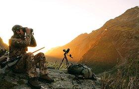 В России заработал сервис для охоты