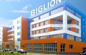 Скидочный сервис Biglion планирует объединиться с конкурентом Frendi