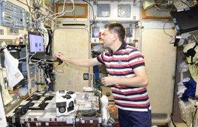 Россия первой в мире напечатала живые ткани в космосе с помощью биопринтера