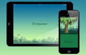 LinguaLeo получила $500 тыс от фонда Social Discovery Ventures