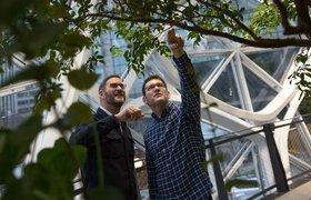 «Амазонские джунгли в центре Сиэтла»: Amazon открыла сферы-офисы с тропическими растениями