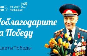Возложить цветы на мемориалы Победы можно онлайн