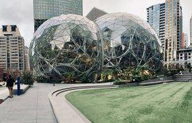 Как стать инженером машинного обучения в Amazon