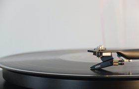 Топ-менеджеры РАО получили долю в крупнейшем агрегаторе прав на музыку