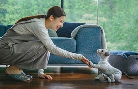 Sony показала домашнего робота-собаку Aibo за $1700