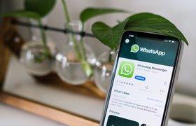 Минздрав запустил чат-бот в WhatsApp для информирования россиян о коронавирусе