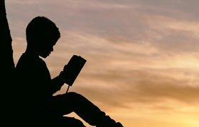 Стоит ли учить английский с детства: мнение эксперта