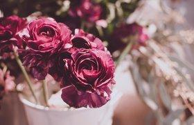 Как открыть свой цветочный магазин: 7 шагов