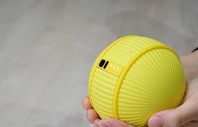 Samsung представила круглого робота — он умеет ходить за хозяином и помогать по дому
