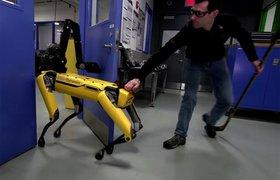 Видео: Люди издеваются над роботом Boston Dynamics
