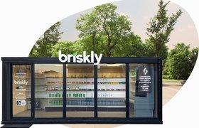 Российский стартап Briskly привлек $2 млн для выхода на зарубежные рынки