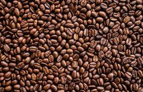 Стартап ищет деньги: i-Coffee