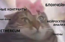 Российский стартап создал сервис по страхованию домашних животных через блокчейн