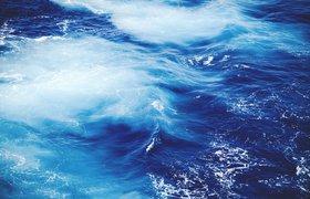 Океан возможностей: для чего стартапам идти в морскую отрасль