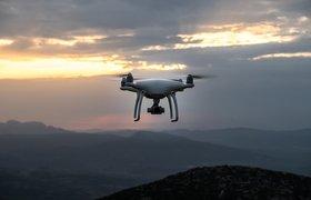 Аэропорты Гатвик и Хитроу закупили военные системы для защиты от дронов