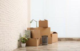 Релокация: как организовать переезд сотрудника