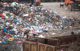 Построенную на хакатоне модель мусорного полигона представят зампреду правительства