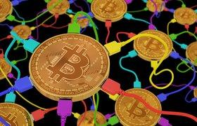 Как выбрать лучший кошелек для криптовалюты —смотрим на надежность и варианты использования