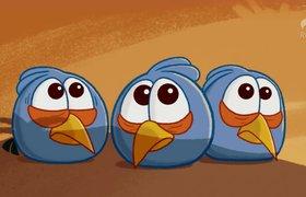 Angry Birds испытывает финансовые трудности и меняет руководство