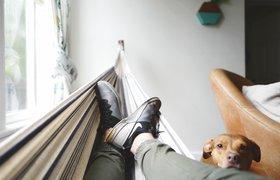 Сон на работе, отгулы без причины и час молчания — как спасти сотрудников от стресса