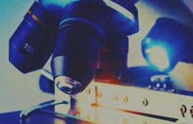 Где учат биоинформатике?