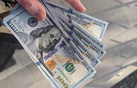Компания с российскими корнями собрала больше 200 тысяч долларов на Kickstarter за 2 дня