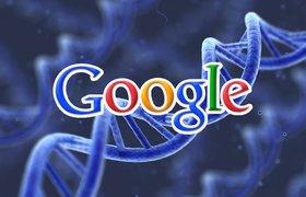 Google будет бороться со старением