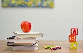 «Дешевле научиться в школе, чем после 30 нанимать коуча». Почему будущему айтишнику нужны гуманитарные предметы