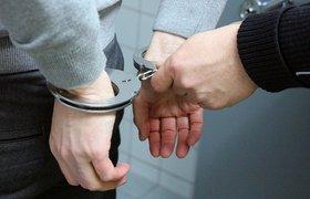 СМИ: Суд арестовал основателя LinguaLeo на два месяца
