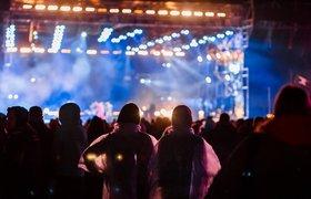 Организаторы «Дикой мяты» начали сбор средств вподдержку отмененного фестиваля