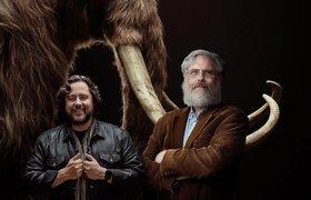 Стартап Бена Ламма собирается «оживить» шерстистого мамонта и выпустить его в дикую природу
