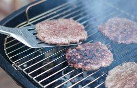 Безос и Гейтс одобряют: стартап Nature's Fynd «одомашнил» микробы для производства альтернативного мяса и молока