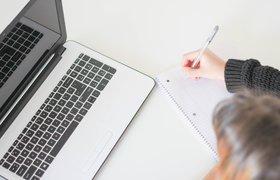 В России стартовало исследование рынка онлайн-образования