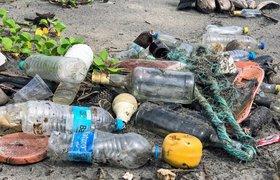 Семь видео об экологических проблемах и нашем будущем