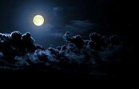 Википедия отправится на Луну