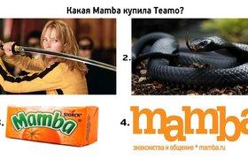 Mamba купила сайт знакомств Teamo