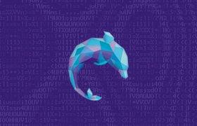Российский блокчейн-стартап Dolphin BI прошел в акселератор Startupbootcamp в Амстердаме