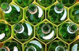 Эко-лицо вашего бренда: как создать дизайн экологичной упаковки и не скатиться в гринвошинг