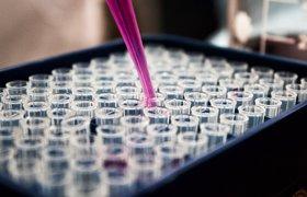 Разработчик препаратов от рака Pyxis Oncology запланировал IPO на $100 млн