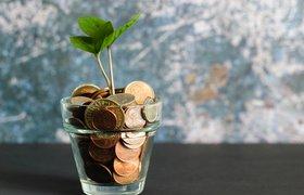 Фонд «Сколково» начал выдавать «большие» гранты стартапам в сфере сельского хозяйства