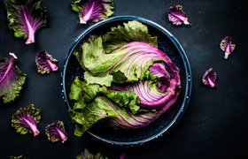 Онлайн-еда: что ждет фудтех в 2018 году и какие стартапы нужны ресторанам