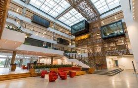 Дома на деревьях и легенды о Билле Гейтсе: как работают в главном кампусе Microsoft