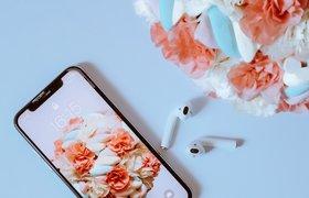 Найден способ взломать любой iPhone и iPad