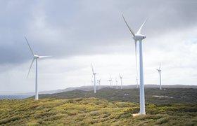 Правительство определило критерии льготного финансирования «зеленых» проектов