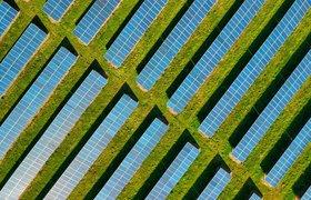 Солнечная энергетика в России и в мире: как на ней заработать